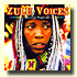 Zulu Voices album page